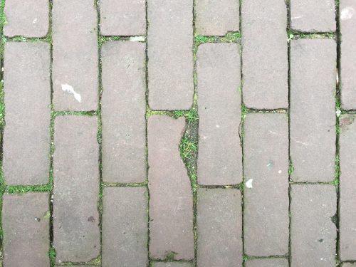 Set of photographs showing random cracks that resemble the triangular map of Palestine.