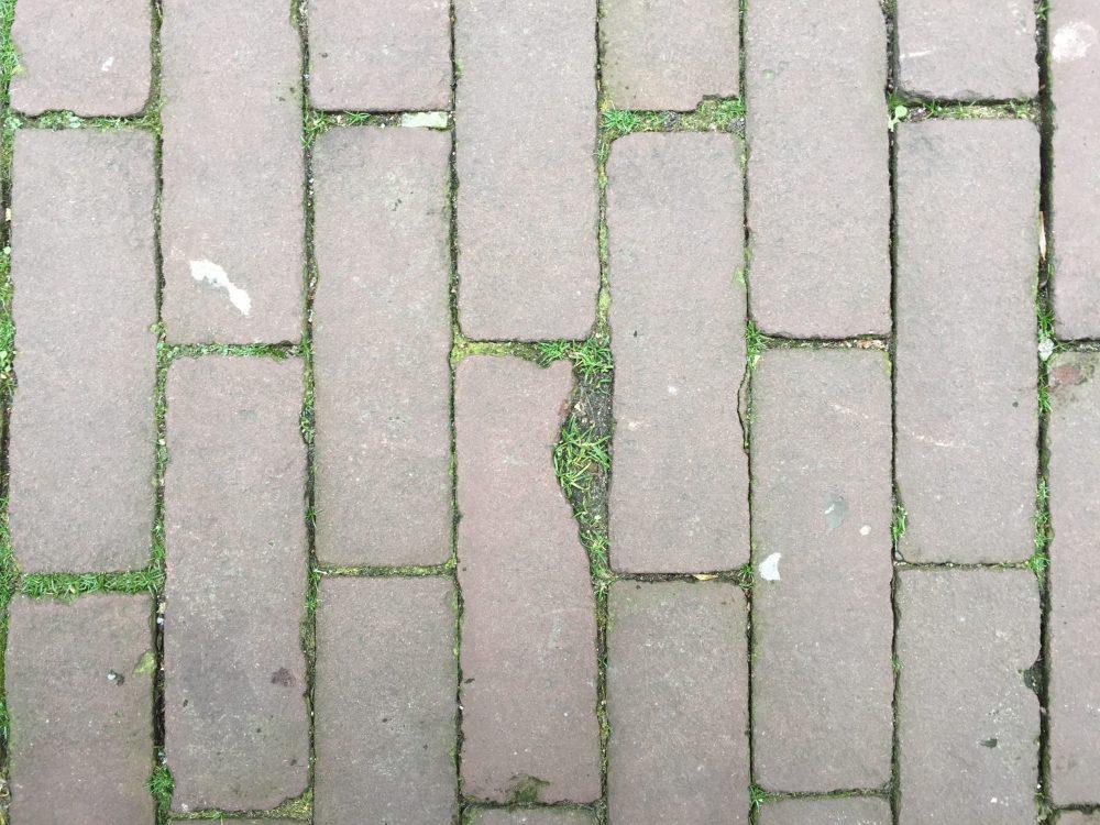 Set of photographs showing random cracks that resemble the triangular map of Palestine