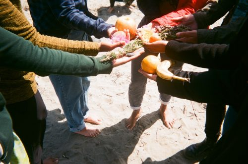 a collective of Black women and nonbinary folks gather in a circle, their arms are stretched inward like a huddle, but their hands are facing upward holding an assortment of fruit and herbal offerings, they are standing on the beach and some of their feet are visible.